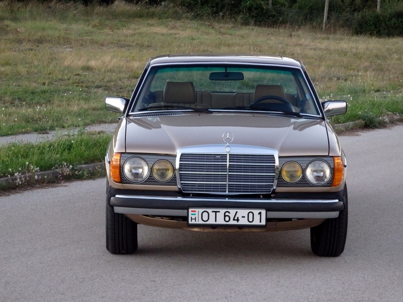 2010 Mercedes Benz 300CD Turbodiesel photo - 3