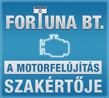 Fortuna Bt. a motorfleújítás szakértője
