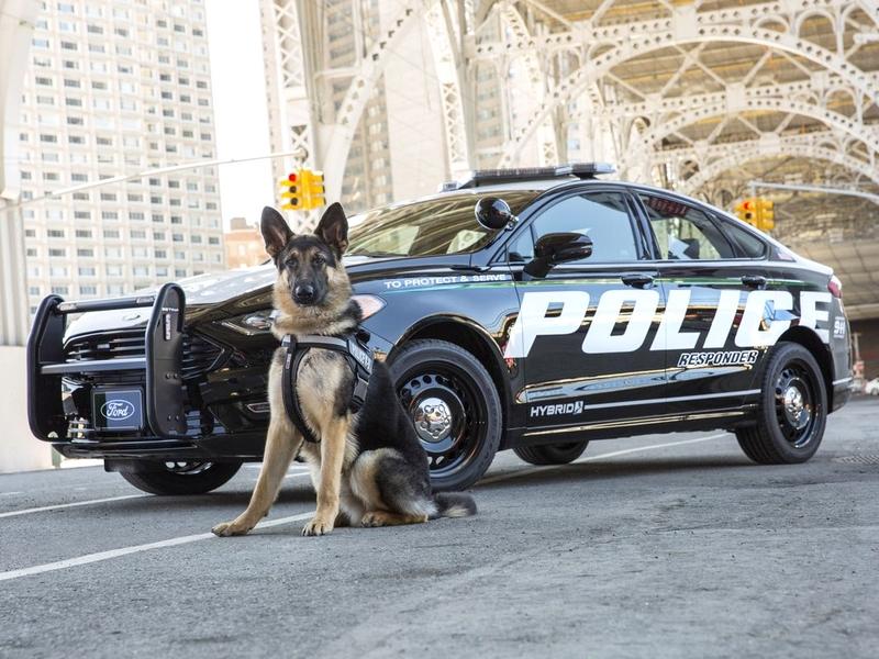Hibrid rendőrautó