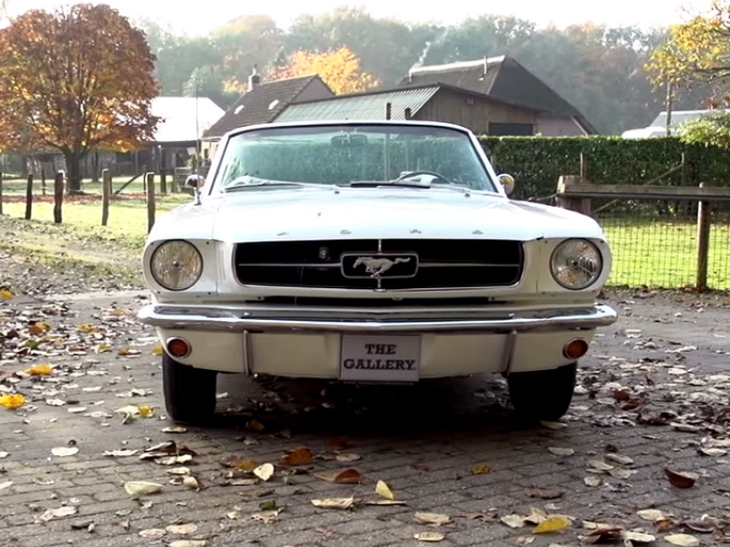 Photo of Ford Mustang – őszi hangulat